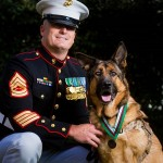 Marine Dog Lucca Honored: Heroic Dog Awarded Top Medal