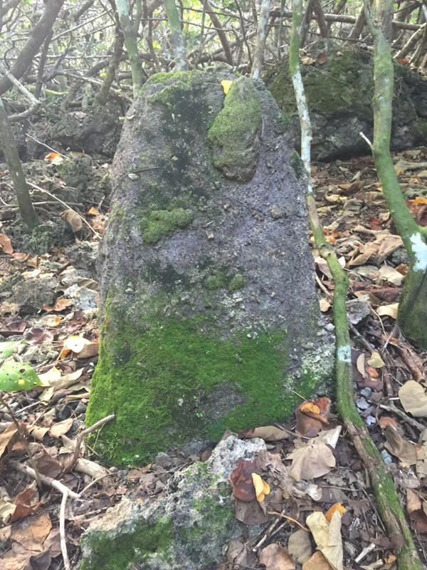 ancient Chamorro village rediscovered